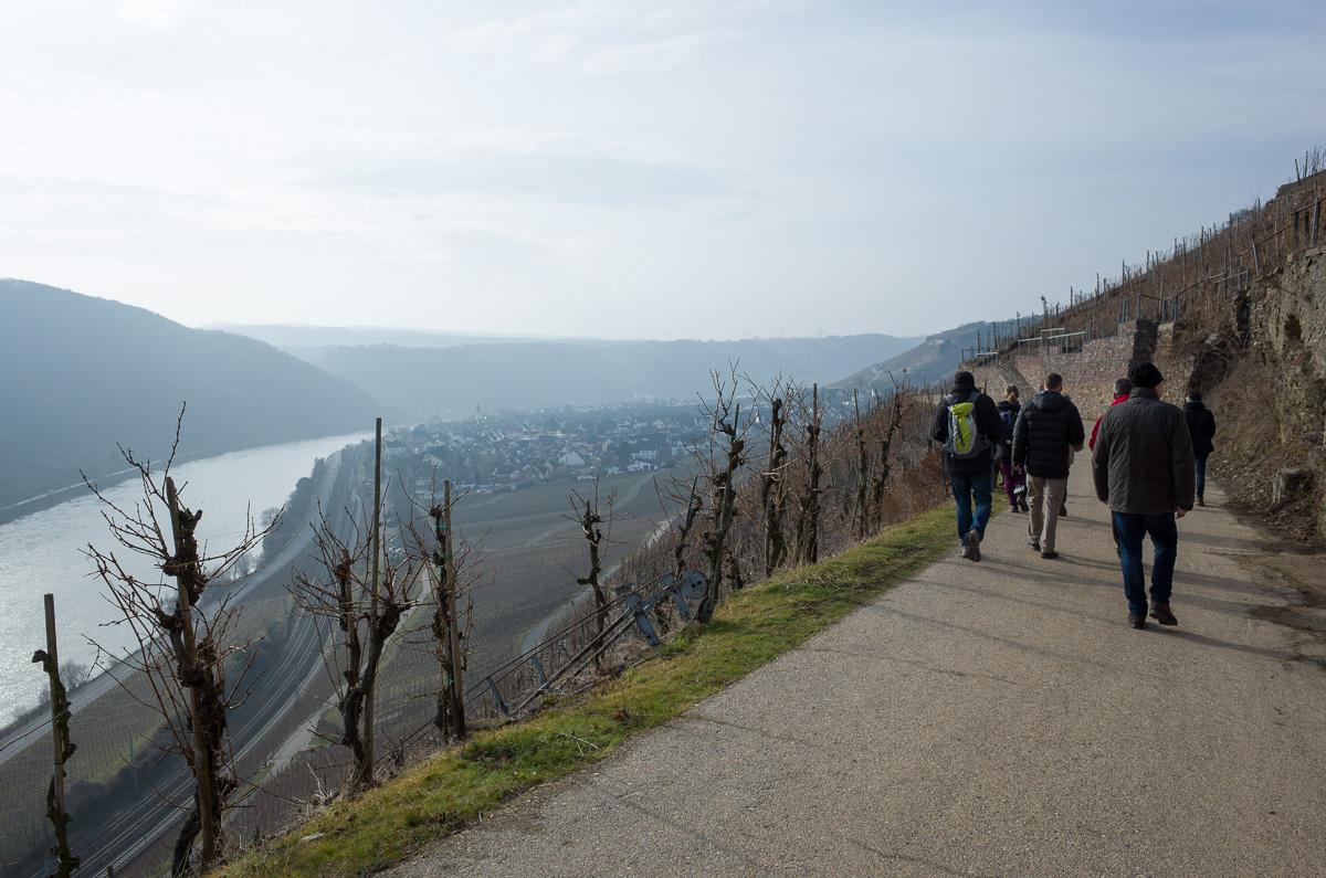 Auf dem Mosel Höhenweg nach Winningen